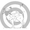 11 - sheep with butcher markings